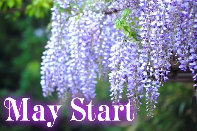 maystart