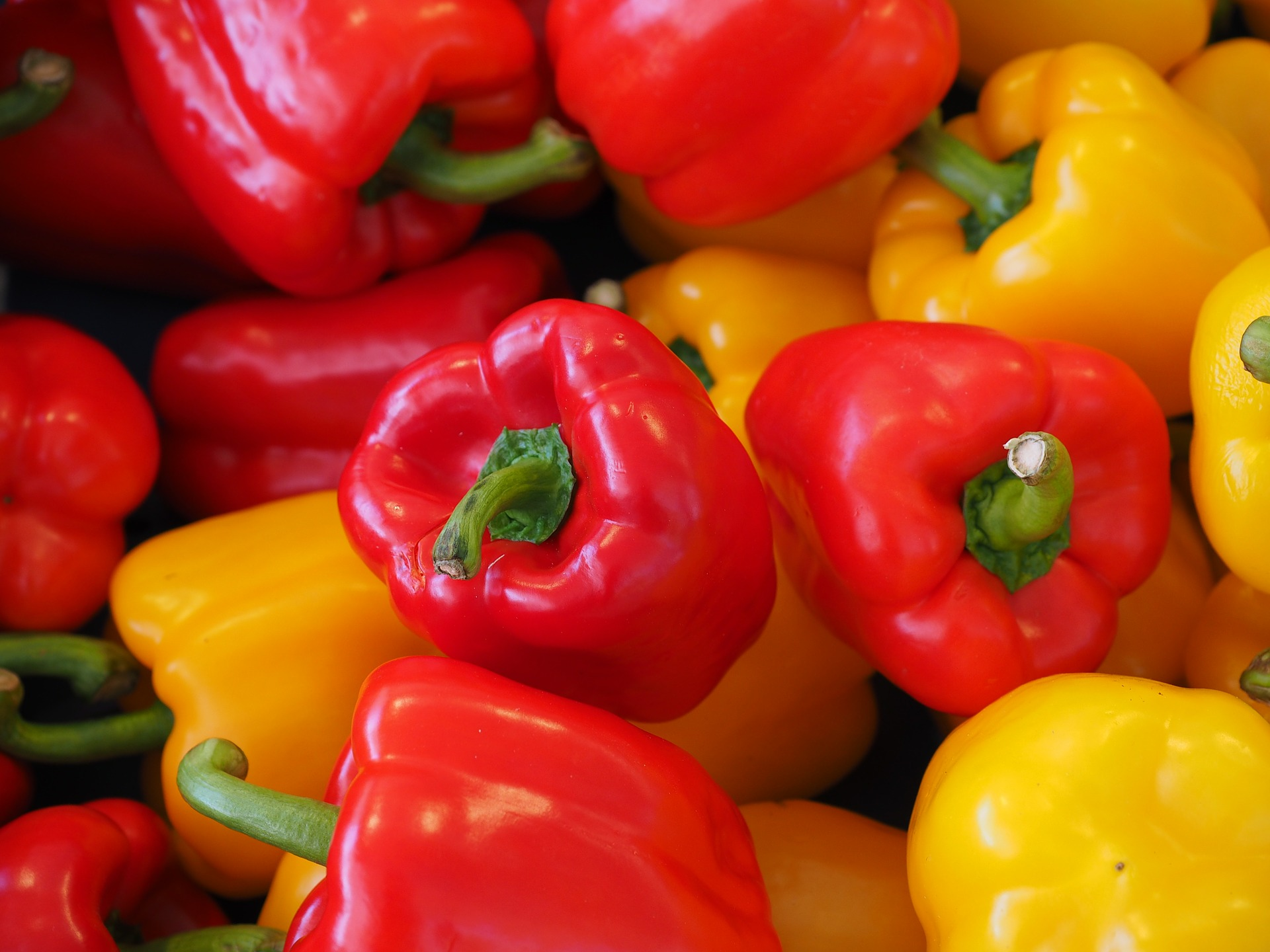 sweet-peppers-499068_1920
