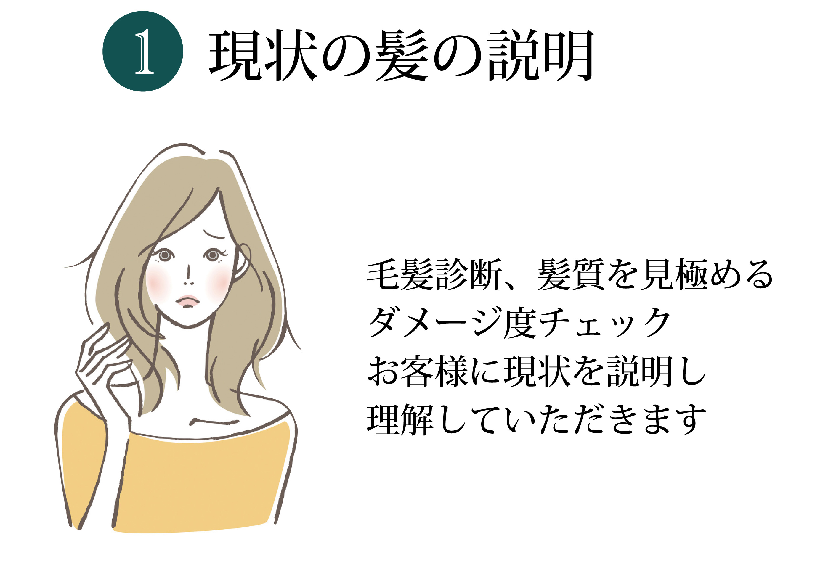 現状の髪の説明 毛髪診断、髪質を見極めるダメージ度チェック お客様に現状を説明し理解していただきます