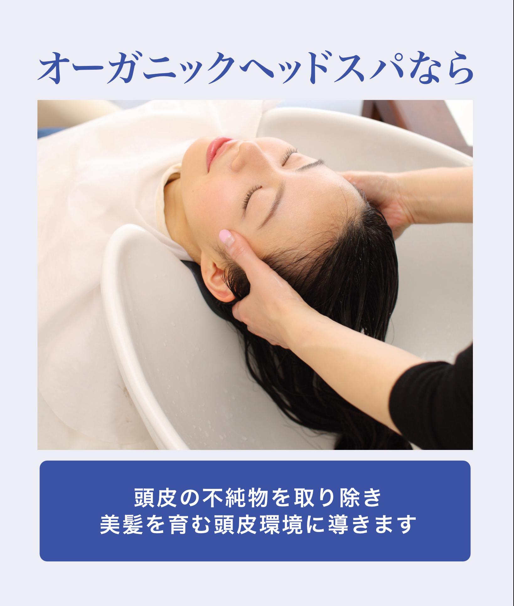 オーガニックヘッドスパなら 頭皮の不純物を取り除き美髪を育む頭皮環境に導きます