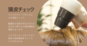 頭皮チェック マイクロスコープカメラによる頭皮チェック健康的な毛髪を育むためにはまずは土壌となる頭皮環境が重要になりますマイクロスコープカメラにて現状の頭皮環境をチェックしてみませんか
